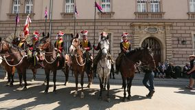 KRAKOW, POLAND - Polish cavalry during annual of Polish national and public holiday stock video footage