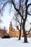 Krakow, Poland. Wawel Castle and old tree royalty free stock photo