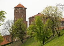 Krakow Wawel Royalty Free Stock Images