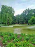 Krakowsky公园在克拉科夫波兰 免版税库存图片