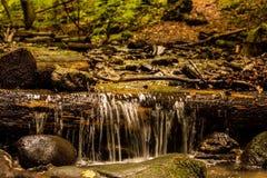 Kralicka Tiesnava, Kraliky , Slovakia. Water , Nature , Forest Stock Photos