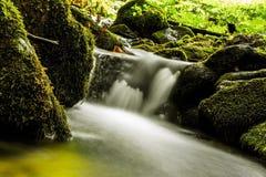 Kralicka Tiesnava, Kraliky , Slovakia. Water , Nature , Forest Stock Photography