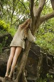 krama treekvinnan royaltyfria bilder