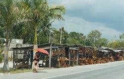 Kramy sprzedaje drewniane pamiątki na ulicie blisko Campeche, Mexico Zdjęcie Royalty Free