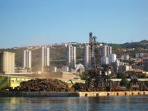 Kran im Hafen Stockfotografie