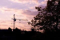 Kran- och trädkontur på solnedgången Royaltyfria Foton