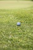 krana balowy golf Obraz Stock
