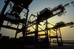 Kranar för behållareskepp på port Royaltyfri Bild