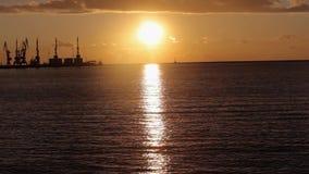 Kranar i havsporten p? solnedg?ngen, en hamn n?ra hamnstaden, en h?rlig seascape, en stor hamnstad p? solnedg?ngen stock video