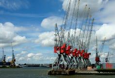 Kranar i porten av Rotterdam Arkivbild
