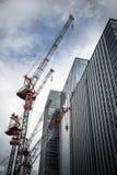 Kranar och skyskrapor fotografering för bildbyråer