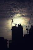 Kranar på byggnadskonstruktionsplatsen Arkivfoton