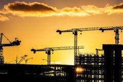 Kranar på counstructionplatsen på solnedgången Arkivfoton
