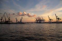 Kranar på den Hamburg hamnen på solnedgången royaltyfria bilder