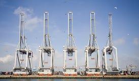 Kranen 2 van de haven Stock Afbeeldingen