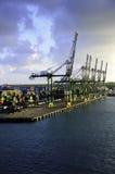 Kranen bij Dubbelpunt Panama Royalty-vrije Stock Afbeeldingen