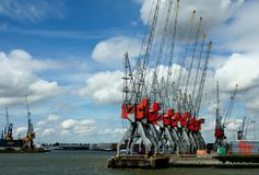 Kranen in de Haven van Rotterdam Stock Foto