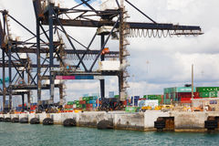 Kranen en containers in de haven van Miami Stock Afbeelding