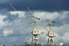 Kranen in haven royalty-vrije stock afbeeldingen