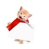 Kranke Katze mit dem Eisbeutel und Thermometer lokalisiert auf weißem backgro Lizenzfreie Stockbilder