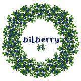 Krans av blåbär Fotografering för Bildbyråer