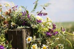 Krans av blommor som hänger på en träpinne på ett löst fält Royaltyfri Fotografi