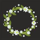 Krans med vita blommor också vektor för coreldrawillustration Royaltyfria Bilder