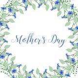 Kransen av blåklinter blommar på en vit bakgrund Dekorbeståndsdel Royaltyfria Foton