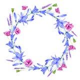 Kransen med blåklockan, örter, lavendel, vallmo blommar Arkivfoto