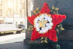 Kranz in Form eines Sternes von einer Gartennelke lizenzfreie stockbilder