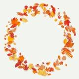 Kranz gemacht von den Herbstblumen und -blättern auf hellem Hintergrund Vase mit trockenen Blättern, Apfel und Kerzen auf dem Rau stock abbildung