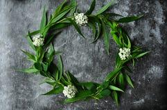 Kranz mit Blumen- und Grünrahmen auf einem grauen Hintergrund Niederlassungen der Weide und der grünen Blätter Grauer düsterer Ze lizenzfreie stockbilder