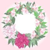 Kranz mit rosa Pfingstrosen und Blumen Stockbild