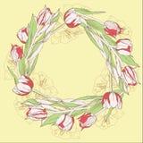 Kranz mit roten weißen Tulpen lizenzfreie abbildung