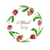 Kranz mit tulips-01 Lizenzfreie Stockfotografie