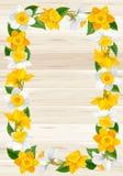 Kranz von Frühlingsblumen Stockfotografie