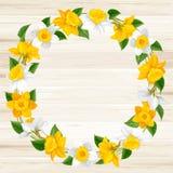 Kranz von Frühlingsblumen Lizenzfreies Stockfoto