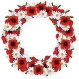 Kranz von Gänseblümchen und von Mohnblumen lizenzfreie abbildung