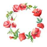 Kranz von roten Mohnblumen Stockbilder