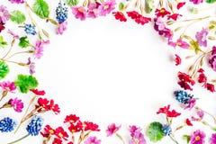 Kranzrahmen mit den Wildflowers lokalisiert Lizenzfreie Stockfotos
