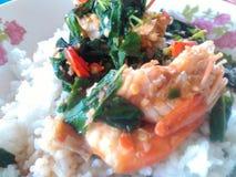 Krapao kong Thai food. Shrimp spisy and herb and rice Stock Image