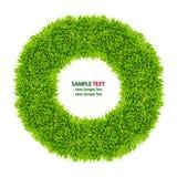 Krapfenfeld des grünen Grases getrennt Stockfotos