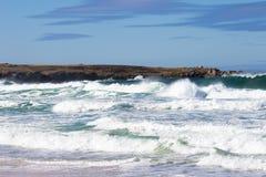 Krascha vågor på bränningfjärden, Falkland Islands Royaltyfria Foton