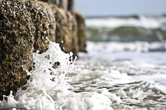 krascha waves Arkivbild