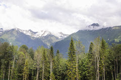 Krasnaya Polyana caucasus Fotografia Royalty Free