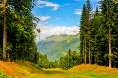 Krasnaya Polyana Ski Resort, Sochi, Russland Lizenzfreies Stockfoto