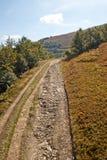 krasnodar дорога Россия зоны горы Стоковые Фото