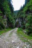krasnodar bergregionväg russia Royaltyfria Bilder