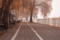 Krasnodar city, Russia Royalty Free Stock Images