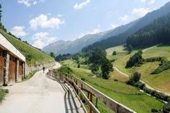 Krasnodar Region Österreichische Alpen Stockbilder